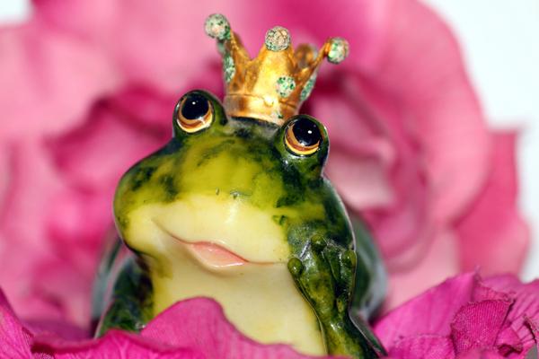 Finden Sie den Prinz Nicos EDV- und Multimedia-Dienst